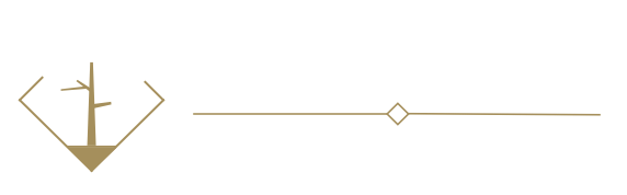 Societex logo